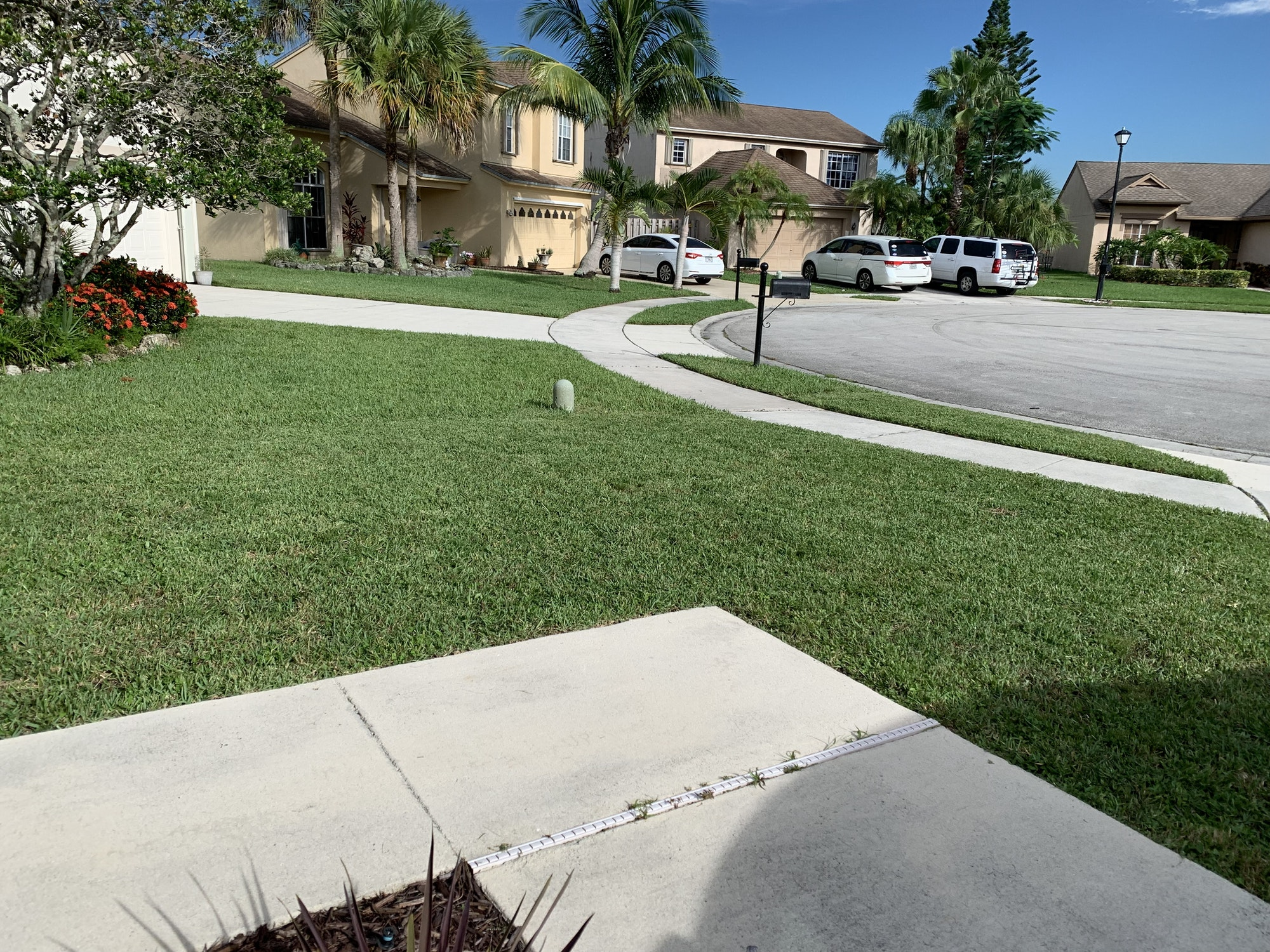 The Walkway On A Florida Home